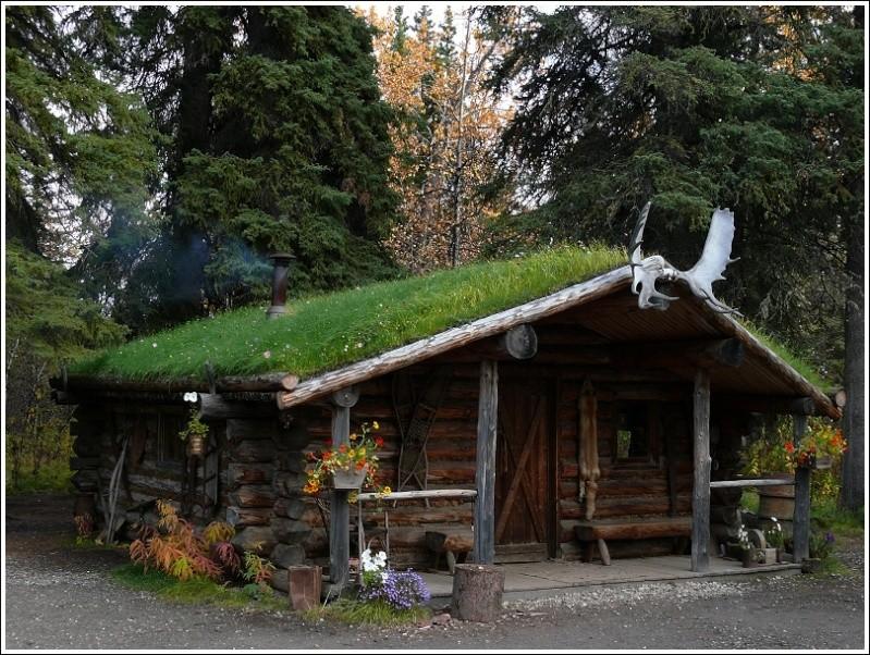 Cabane en bois pour y vivre