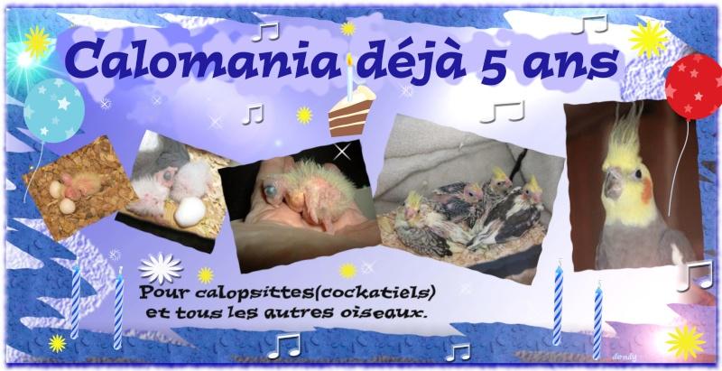 CALOMANIA.COM