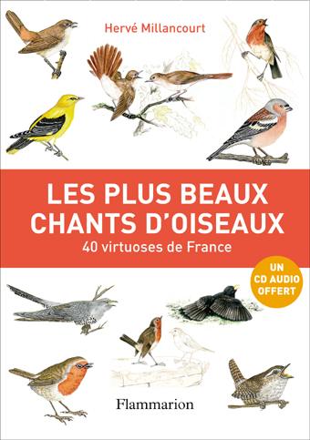 Les plus beaux chants d'oiseaux de France - Hervé Millancourt