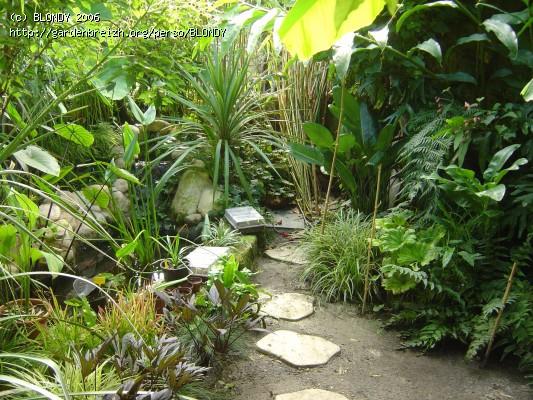 Mon tout petit patio - Piscine dans petit jardin de ville saint paul ...