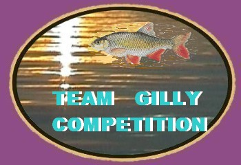 Team  Gilly  Compétition