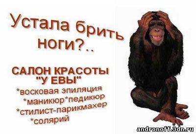 http://i43.servimg.com/u/f43/17/13/85/34/_aq4_010.jpg