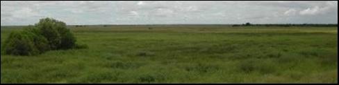 Plateau herbeux