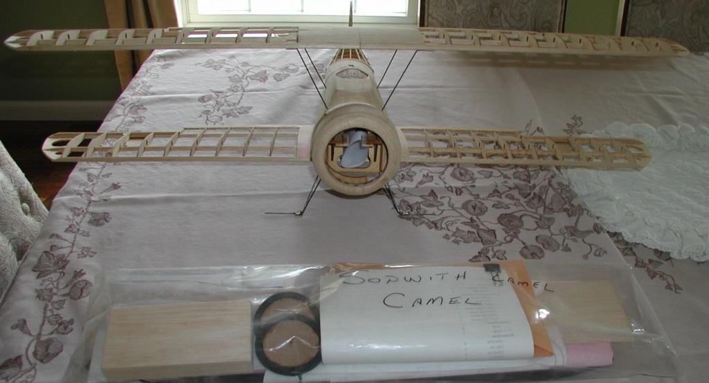 camel_10.jpg
