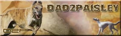 d2pls710.jpg